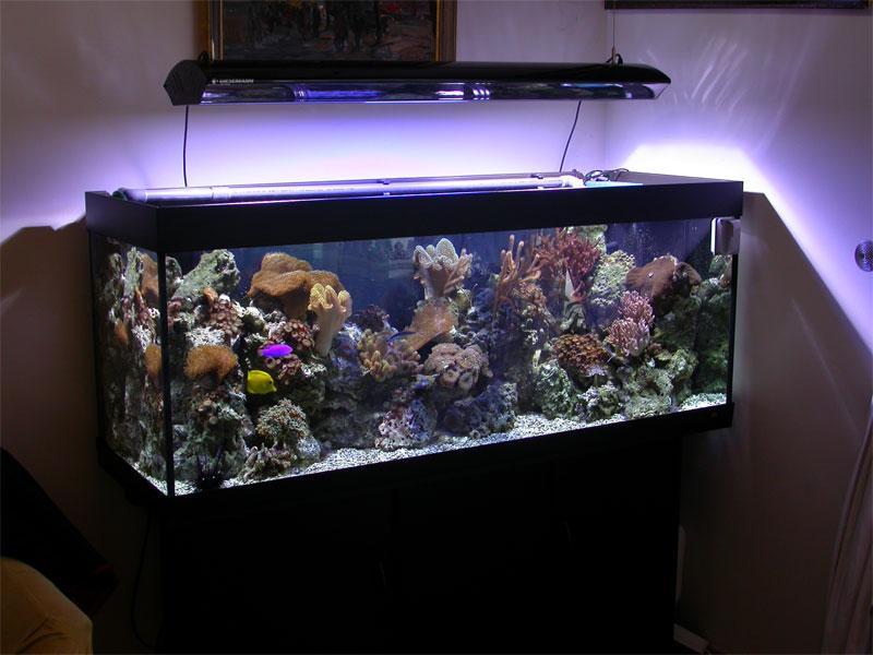 Крышка на аквариум с подсветкой своими руками