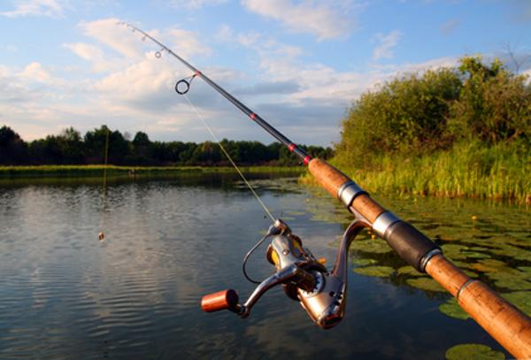 все о летней рыбалки на спининг